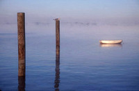 Posts and Boat in Fog