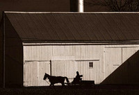 Horse, Carriage and Barn