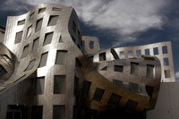 Gehry Brain Center
