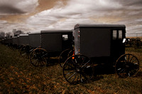 Amish Buggies III